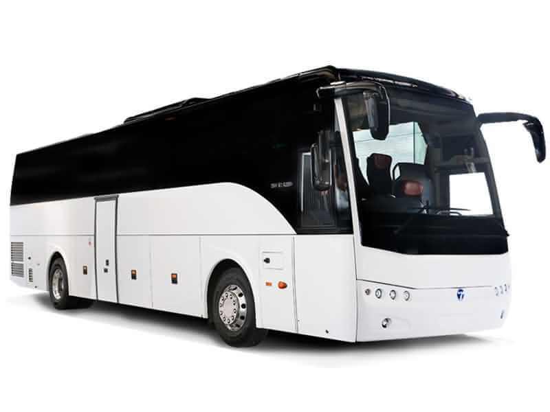 16 Safari Buses